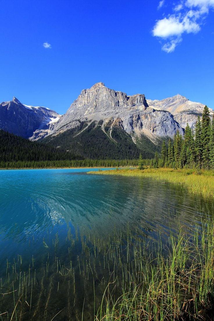 The Call Of Nature Yoho National Park British Columbia