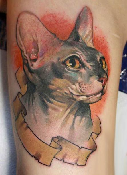 45 cute and lovely cat tattoos ideas for cat lovers for Hairless cat tattoo