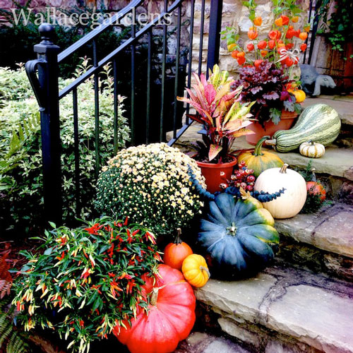 50 amazing thanksgiving pumpkin decorations ideas for How to decorate a pumpkin for thanksgiving